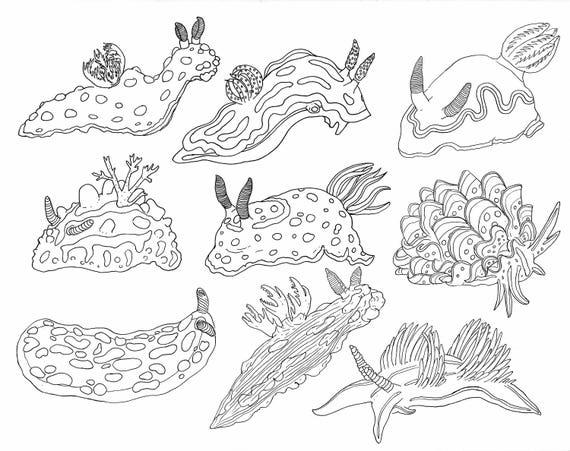 Libro de colorear submarino con hechos Para adultos y niños