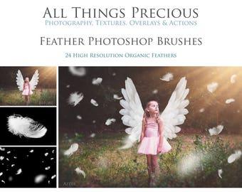 24 Fine Art Digital FEATHER Photoshop BRUSHES