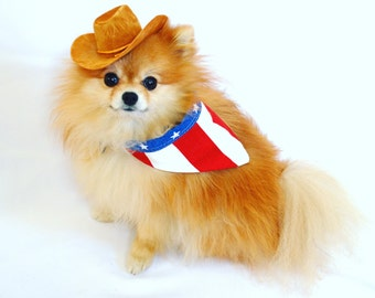 Cowboy Hat and USA Bandana Costume for Small Dogs and Cats