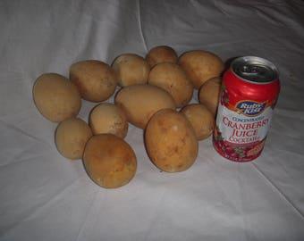One Dozen Egg shaped gourds