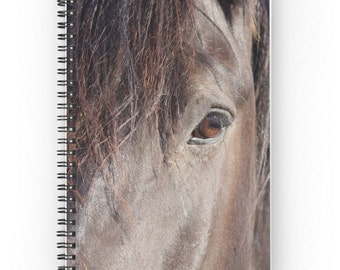 Horse Spiral Notebook ~  Gift for Equestrian  ~  Dark Brown Horse Notebook ~ Girl's Diary ~ Equine Journal ~ Animal Photography ~ Riding Log