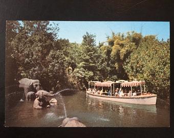 Vintage Disneyland Adventureland Postcard - Elephant Bathing Pool - Jungle Cruise
