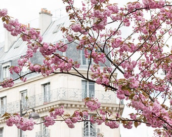 Paris Photography, Parisian Apartment in the Spring, Cherry Blossom Season, Pretty in Pink, Paris in the Springtime, Pink, Paris Home Decor