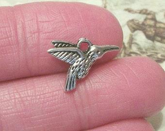 8 Hummingbird charms, 15x12mm, antique silver finish