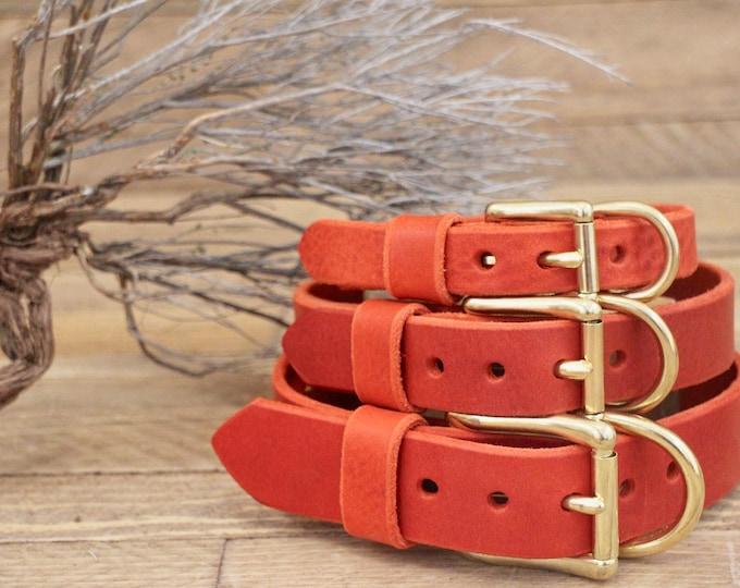 Dog collars, FREE ID TAG, Collar, Cayenne collar, Custom leather collar, Solid brass , Handmade leather collar, Gold Hardware, Red collar.