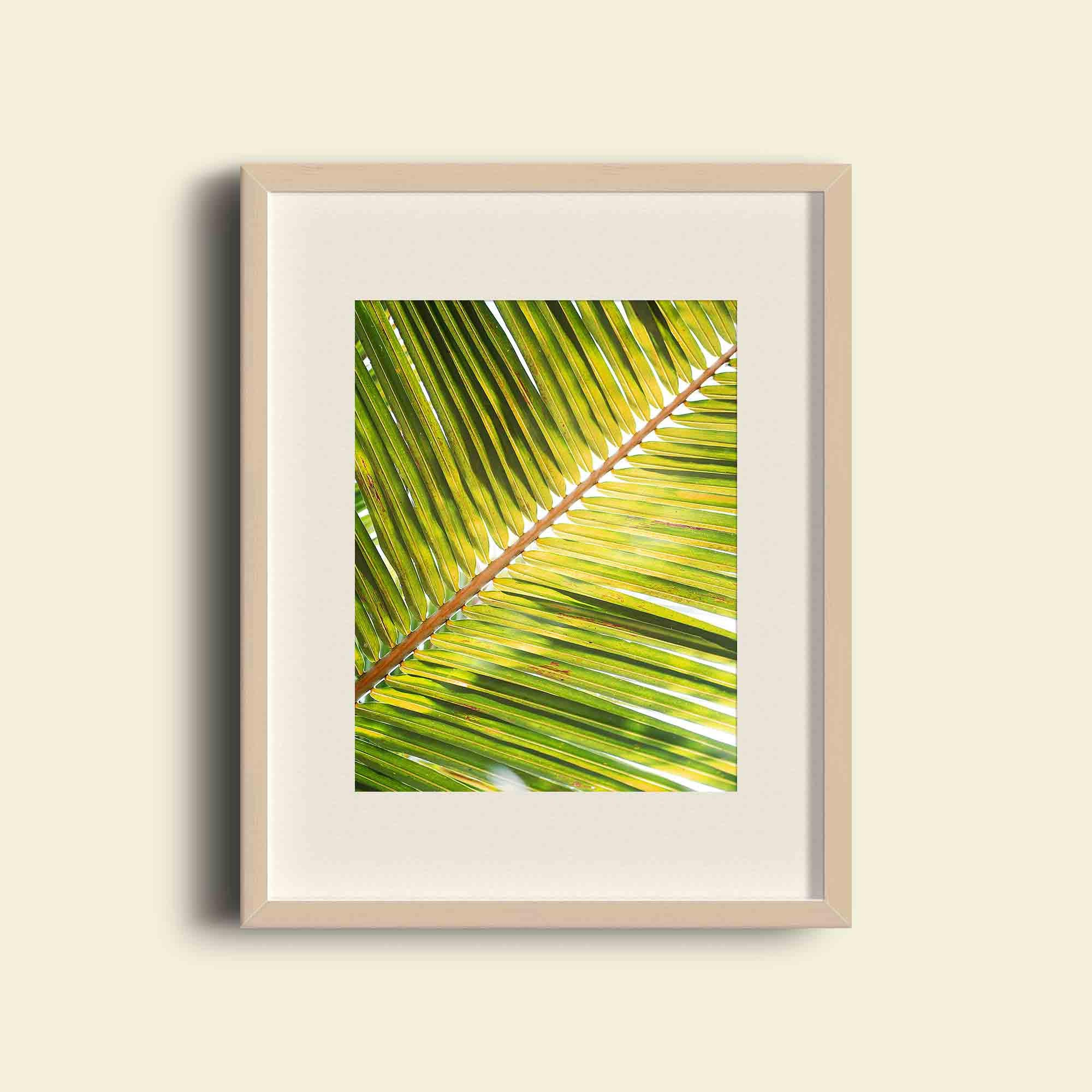 Funky Tropical Wall Art Images - Art & Wall Decor - hecatalog.info