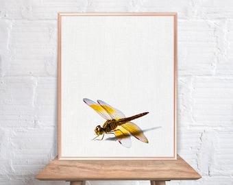 Dragonfly wall art / Dragonfly home decor / Dragonfly Print / home decor Dragonfly / Dragonfly Art / Dragonfly Wall Decor #75