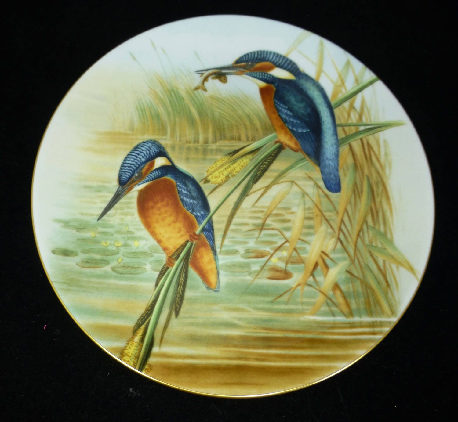Coalport Bone China Display Plate The Kingfisher John