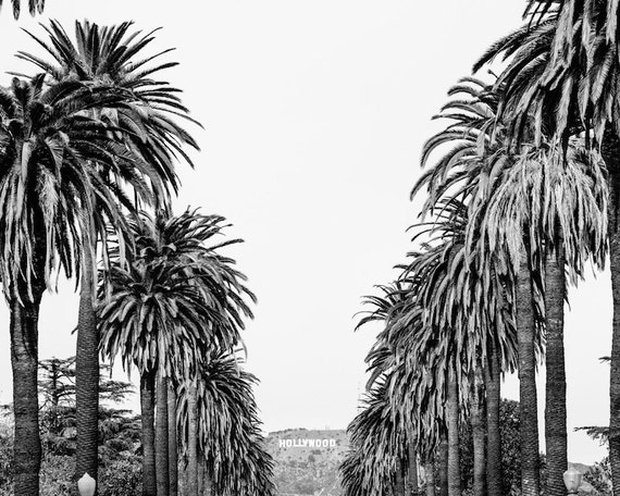 Hollywood Sign Photograph Black And White Los Angeles Print