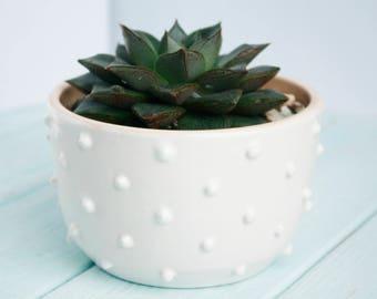 White Ceramic Planter - White Succulent Planter - Modern Succulent Pot - Air Plant Holder - Plant Holder - Cactus Planter - Plant pot