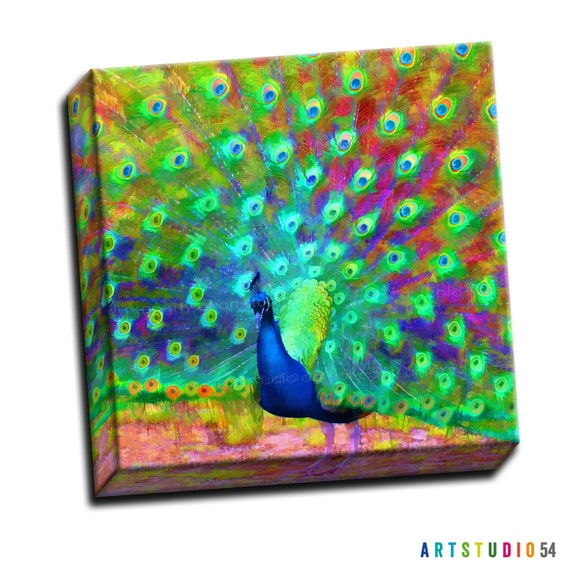 """Bright Painted Peacock Bird Feather -  6""""x6"""" to 36""""x36"""" - 1.25"""" Deep - Gallery Wrapped Canvas - artstudio54"""