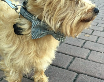 Dog collar with bow tie Size M
