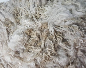 """Suri Alpaca Locks, 8-11"""" Natural White Locks,  Unwashed Locks, Doll Hair, Lock Spinning, Tail Spinning 003"""