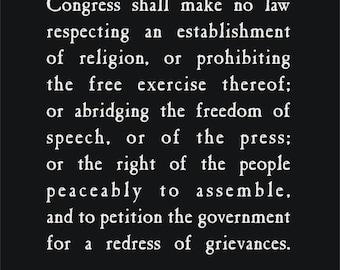 FIRST AMENDMENT Freedom of Speech T-Shirt