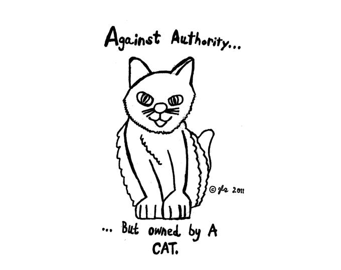 Art Punk Shirts Punk Shirt Print DIY Funny Cute Humor Anarchist Anarchy Rebel Rocker Against Authority But Owned By A Cat Small Cloth Shirt