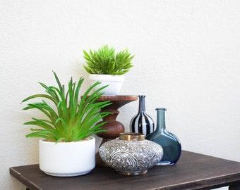 Desert Grass in Trendy Planter