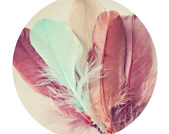 Beautiful Feathers - 10x10 photograph - Home Decor - fine art print - vintage photography - geometric nature print