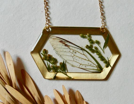 Real cicada wing and mugwort flower buds brass hexagon necklace
