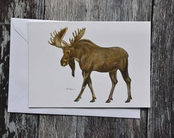 Moose - Elk Greeting Card - Woodland Animal Card - Eco-Friendly