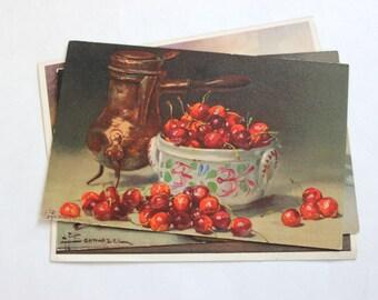 4 Vintage Still LIfe Unused Blank Postcards - Vintage Unused Postcards