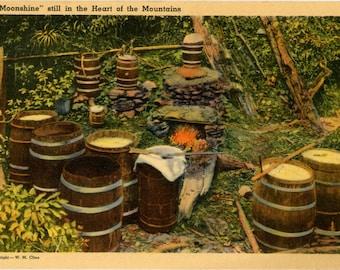 Moonshine in Heart of Tennessee Mountains Vintage Postcard (unused)