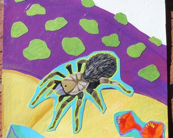 Collage with Tarantula