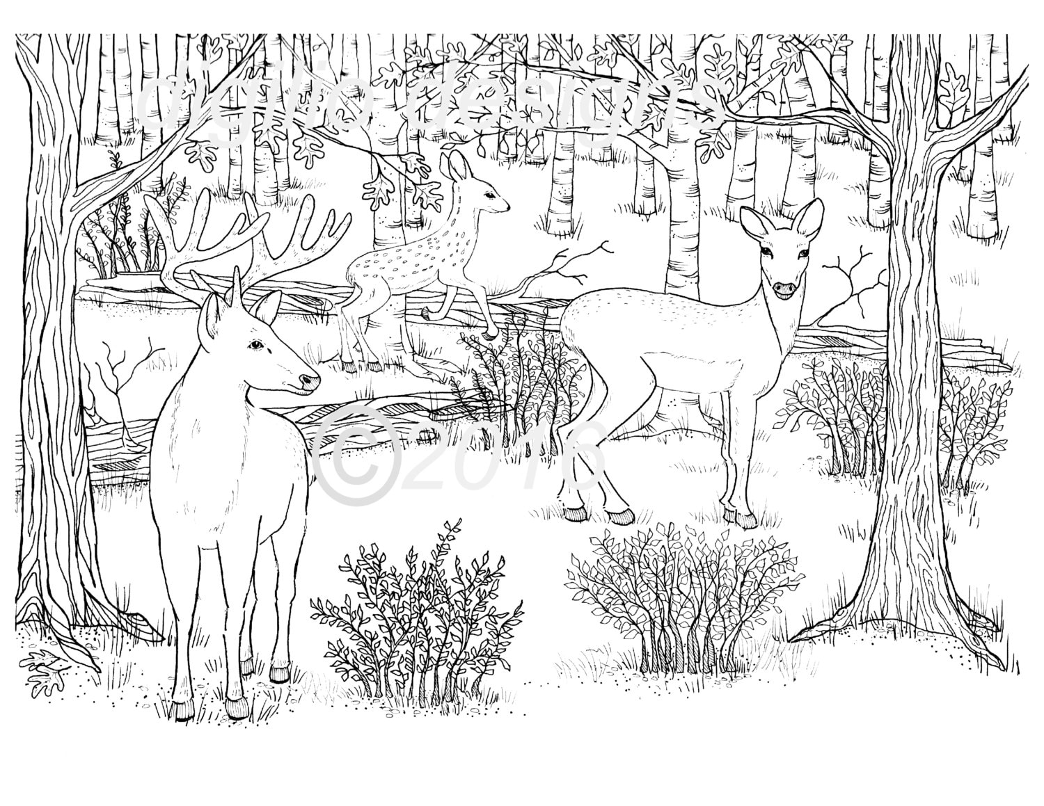 Adult Coloring Page Deer Woodland Forest Deer In The Dell Wall
