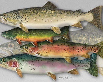 TROUT ART PRINT - a limited edition s/n giclee reproduction of fly fishing art, watercolor print  - by Andy Sewell