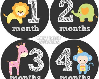 Baby Month Stickers, Monthly Baby Stickers, Bodysuit Stickers, Monthly Milestone Stickers, Baby Monthly Stickers, Girls Baby Animals