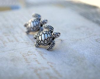 Schildkröte-Ohrring Ohrstecker--Silber, Schildkröten, Schildkröte Ohrringe, Silber, Meeresschildkröte Ohrstecker