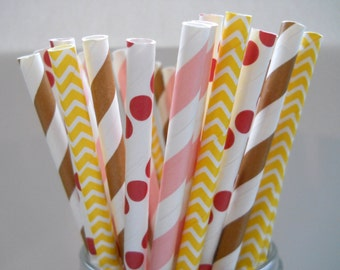 BELLE - Stripe Paper Straws - Paper Party Straws - QTY 25 - Beauty and the Beast Party - Princess Party