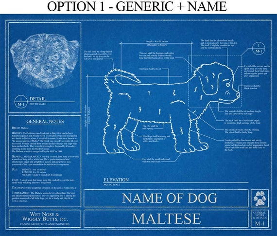 Personalized maltese blueprint maltese art maltese wall like this item malvernweather Gallery