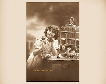 Girl With A Bird Cage New 4x6 Vintage Postcard Image Photo Print CE88