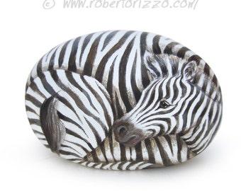 Amazing Zebra Painted on A Sea Rock   Stone Art by Roberto Rizzo