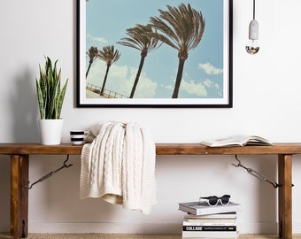 Palm Print, Palm Trees Photo, Tropical Decor, Beach Decor, Landscape Photography, Spain Photography, Wall Decor, Wall Art, Mediterranean