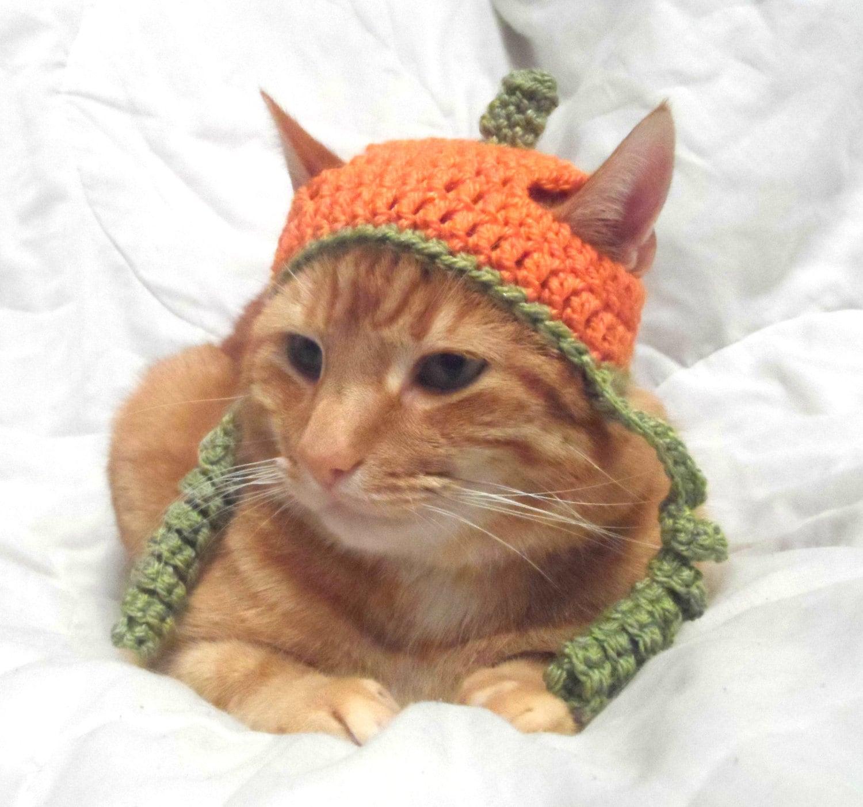 Katze häkeln Hut Halloween-Kürbis-Hut für Katzen