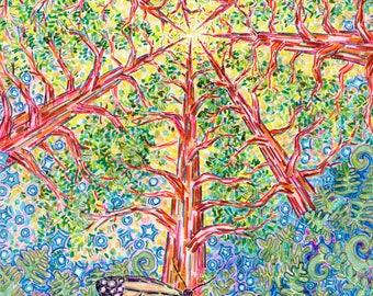 Greeting Card, Divine Butterfly, Eco-friendly, Sunshine Portal, Redwoods Tree medicine, California sunshine, Mystical Monarch Spirit, Sacred