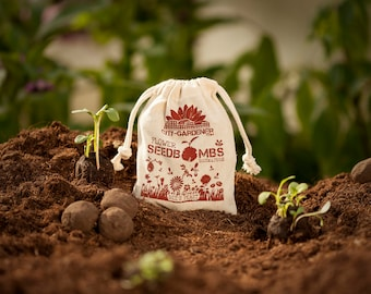 "Seed Bombs ""Bee's Feast"", 8 walnut sized & handmade seed balls"