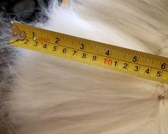 5.5 ounces of clipped Angora raw wool