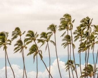 Palm Trees on Hawaiian Beach Surf Photography Decor Print, Ocean, Hawaii, Maui, Oahu, Kauai, Tropical, Hawaiian Island, California, Florida