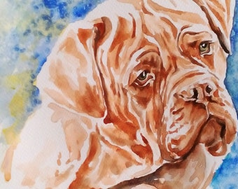 Painting Watercolor Dog of Bordeaux Mastiff
