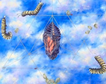 "Butterfly Growth Stages ""Journey"" Sacred Geometry Artwork"