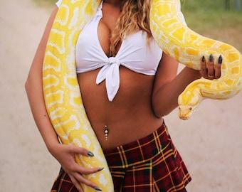 Ode to Britney 6x9