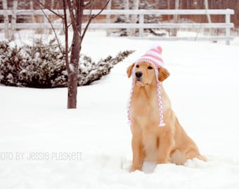Crochet Doggie Hat (PDF) Pattern for Large Dogs