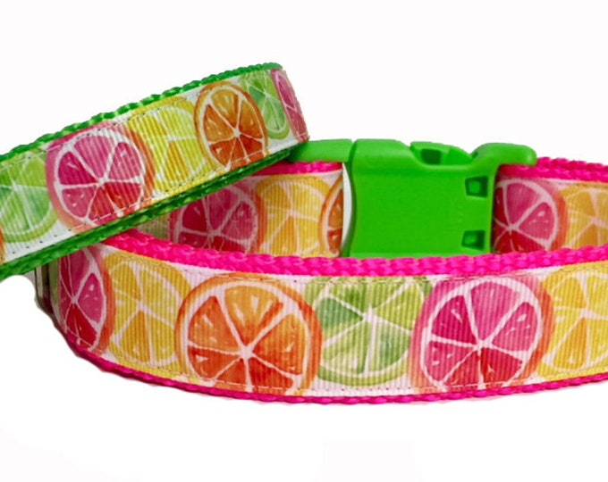 Featured listing image: Citrus Fun - Dog Collar - Lemons - Limes - Neon - USA - Pet - Gift - Summer - Bbq - Holiday - Puppy - Handmade -