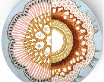 Sea  Life II - 1800s illustration plate