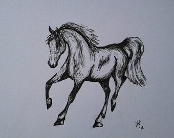 The Dancer. Original ink drawing. Not a print. Dancing Horse.