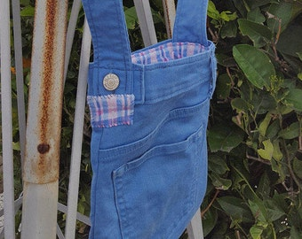 Little blue pocket Pouch