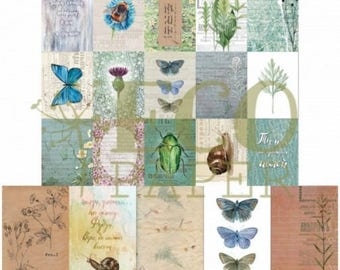 Meadowsweet Nature cards