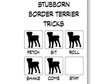 Border Terrier Stubborn Tricks Funny Fridge Magnet